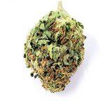 Durban Poison - Cannabis Bud - Marijuana Strain