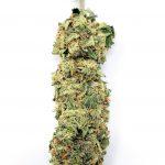 BC Pink - Cannabis Bud - Marijuana Strain