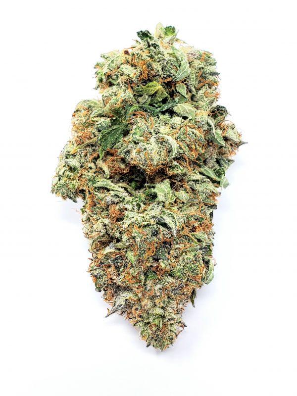 Sunset Sherbert - Cannabis Bud - Marijuana Strain